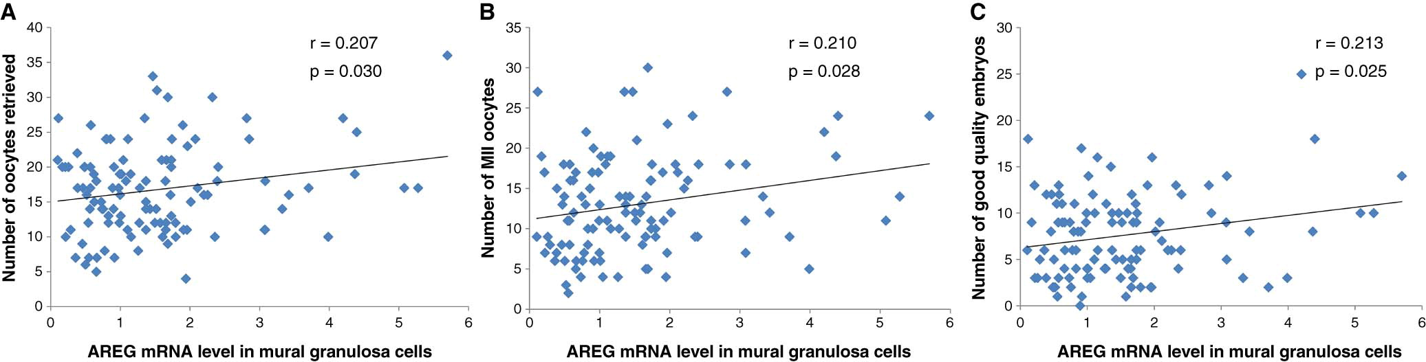 Altered amphiregulin expression induced by diverse for Mural granulosa cells